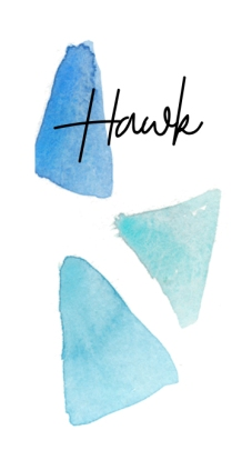 HawkSignature